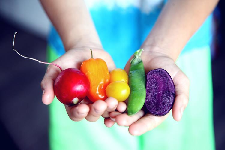 tilt-shift-lens-photography-of-five-assorted-vegetables-1196516.jpg